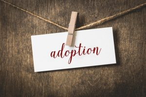 Adoption In The Argument For Life
